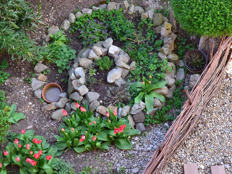 Wasserstellen im Biogarten anlegen