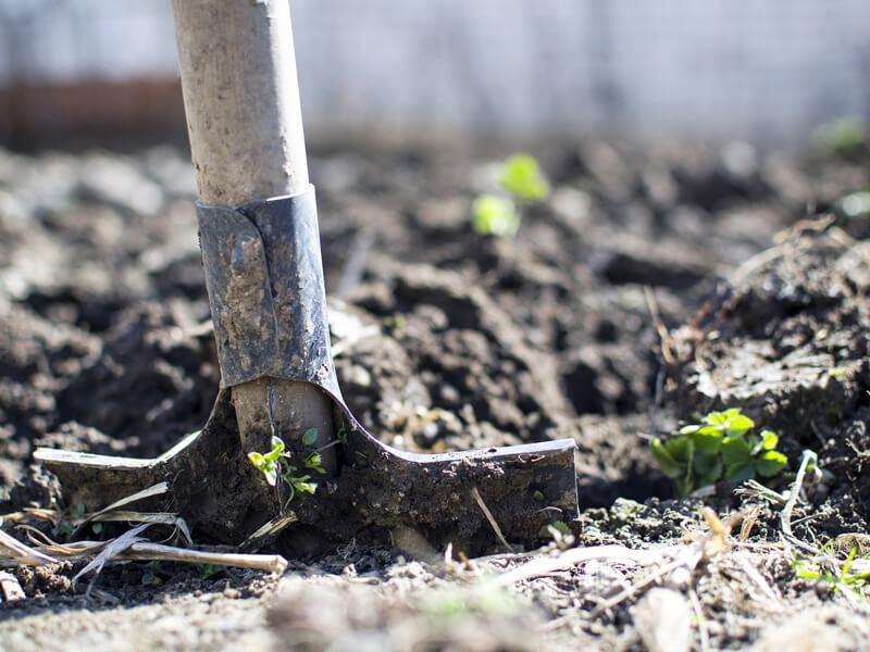Boden vorbereiten für Beete