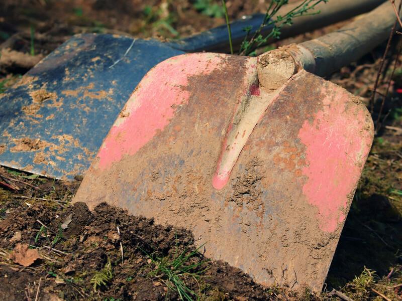 Gartengeräte säubern und desinfizieren