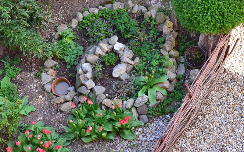 Header Mini-Gartenteich anlegen und bepflanzen