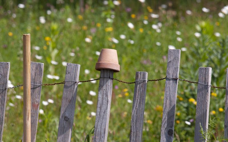 Header Naturgarten anlegen