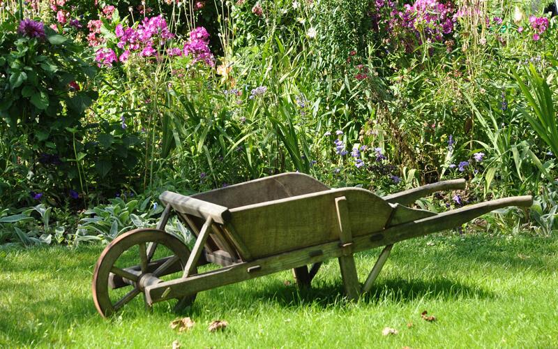 Header 10 Tipps für Gartenanfänger