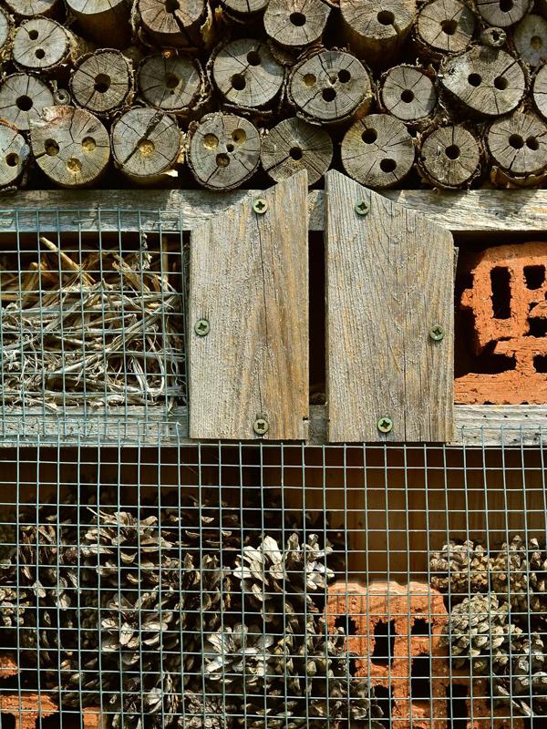 Insektenhotel basteln mit unserem Insektenhotel-DIY