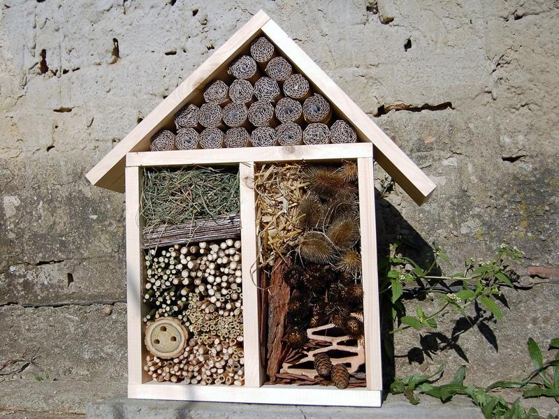 Insektenhotel bauen mit unserer Bauanleitung