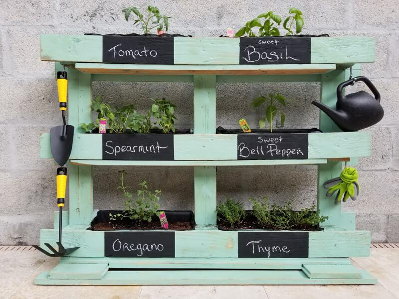 Kräuterregal aus Paletten bauen und bepflanzen