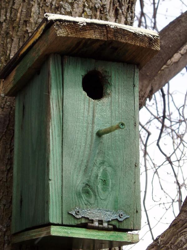 Vogelhaus bauen / Vogelhaus selber machen