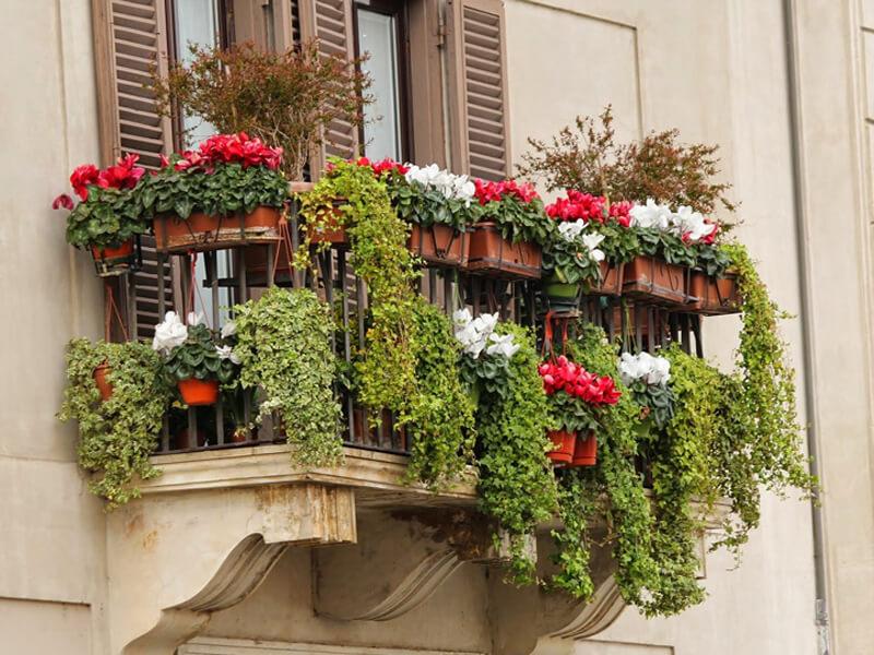 Sichtschutz Balkon: Kreative Ideen