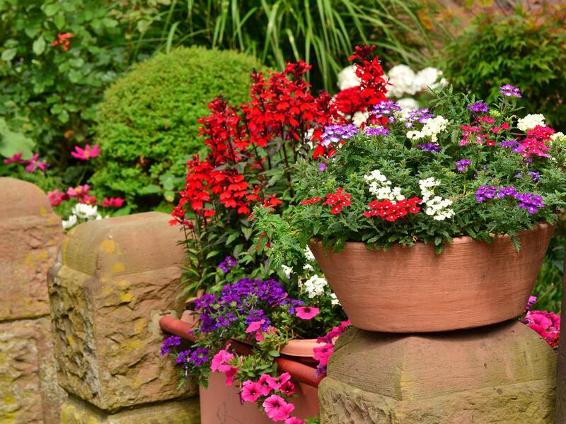 Beetplaner Blumenkübel bepflanzen
