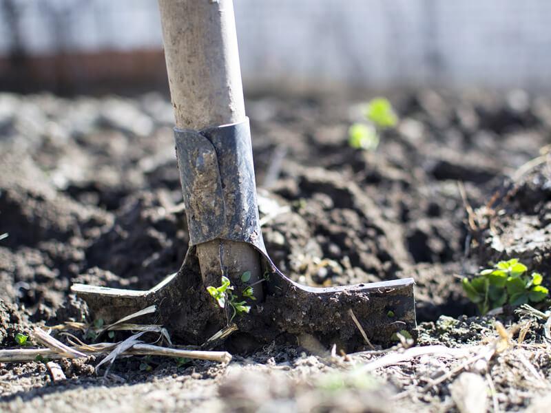 Boden umgraben oder Boden lockern?