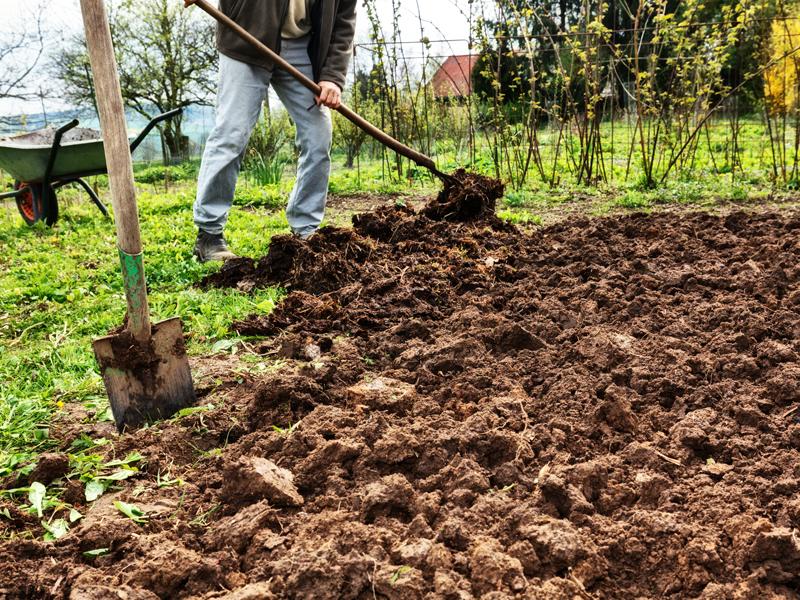 Boden vorbereiten: Gemüsebeet umgraben oder tief lockern