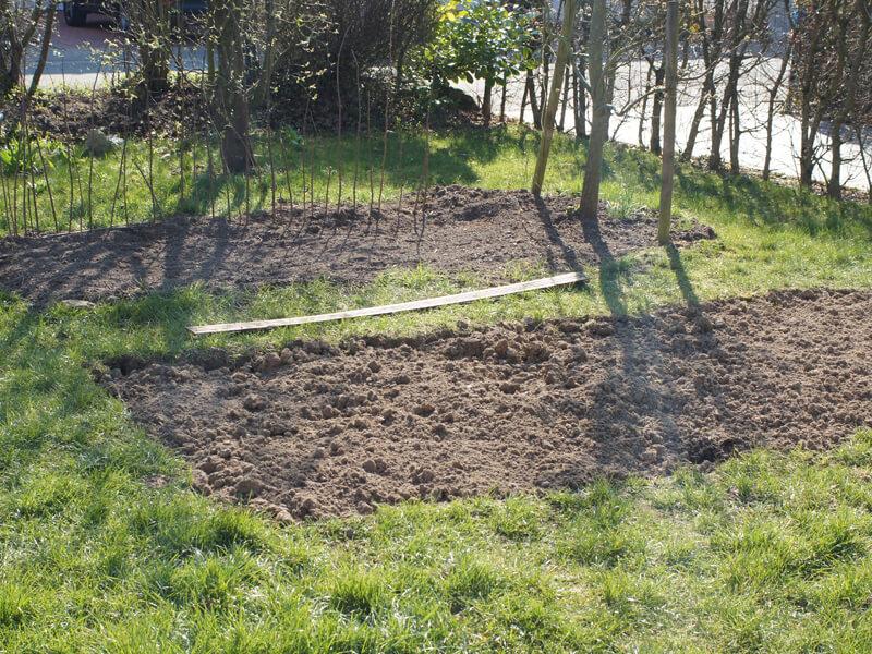 Zum Gemüsebeetanlegen gehört es, die Grasnarbe zu entfernen.