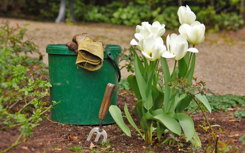 Header Gartenkalender April