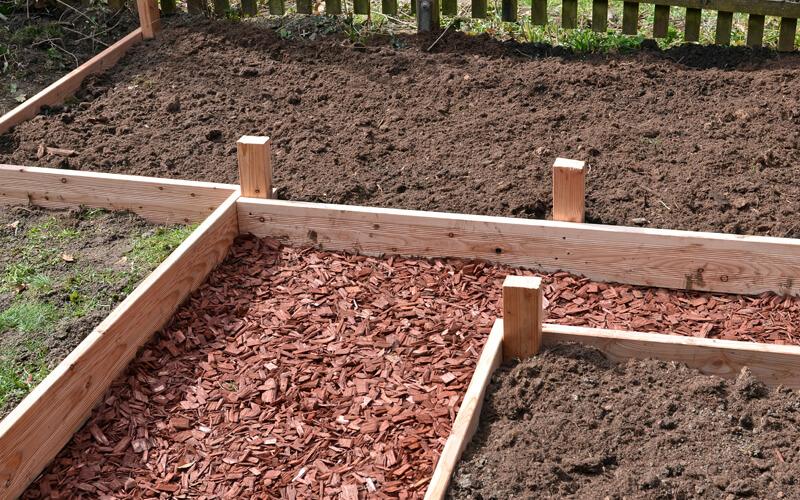 Header Gemüsebeet selber bauen