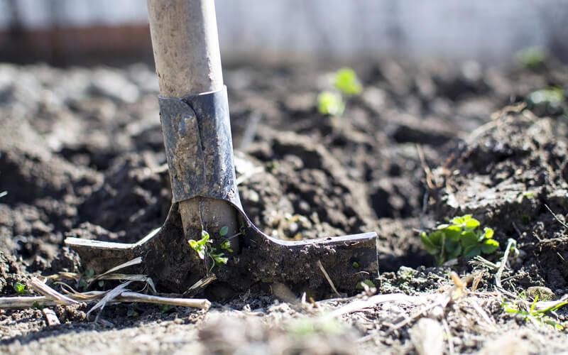 header Boden umgraben / Boden verbessern
