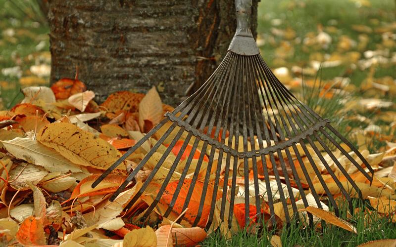 Header Gartenkalender Oktober