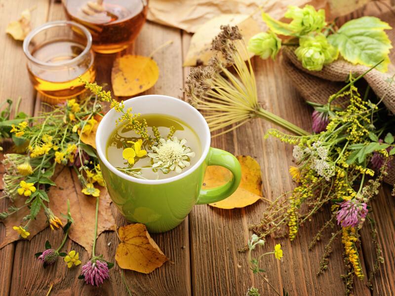 Teekräuterbeet anlegen