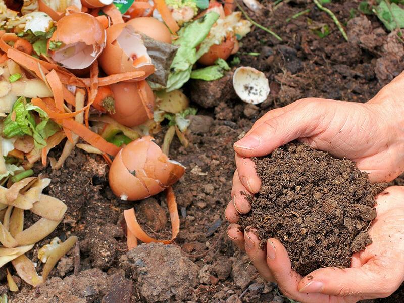 Düngen mit Kompost